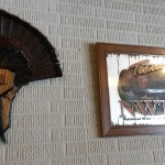 Okonski Auction #16 Turkey Fan & pic